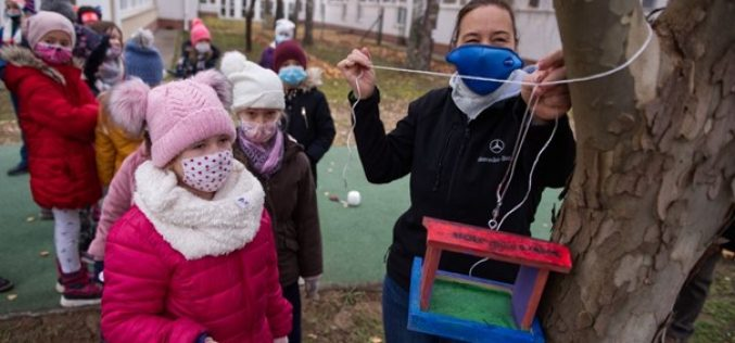 Madárházakat tettek ki a Mercedes iskola tanulói